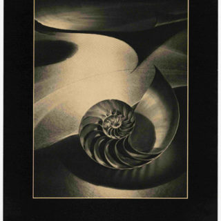Corpron, Carlotta: CREATIVE PHOTOGRAPHY / IMAGES OF THE IMAGINATION [poster title]. Denton, TX: Texas Woman's University, 1980.